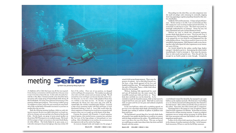 Baja Life story, diving with whale sharks.